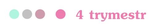 logo 4Trymetrs